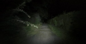 Blair Witch Cycling