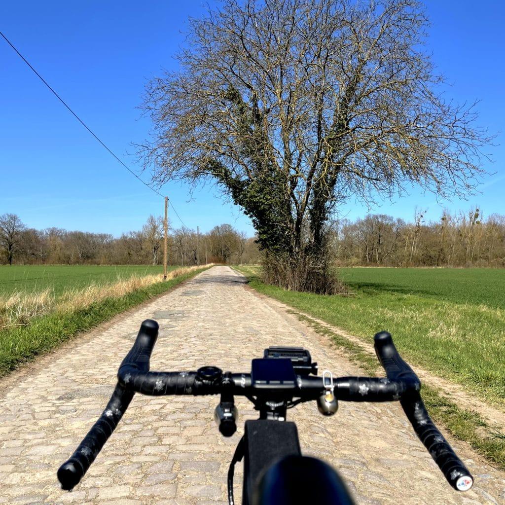 Cobbles Roubaix am Rhein